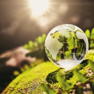 cuidado del medioambiente